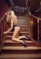 Tall Blonde Escort From Denmark Elona +79661785468 Dubai escort